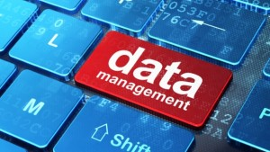 Online database management software is an absolute necessity today