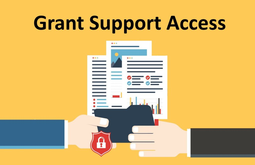 Grant Access to TeamDesk Support